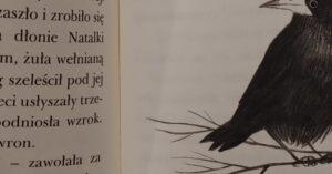 Recenzja Lola i ptaki. Poziom 3, Pudel na dyskotece. Poziom 1, Chrapka na apkę. Poziom 1 (4)