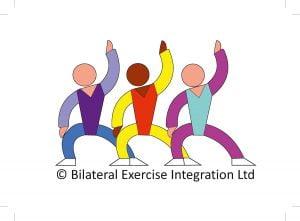 Bilateralna Integracja